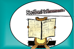 Section evenements